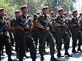 Brigada de Fusileros Paracaidistas.jpg