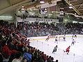 Bright Hockey Center, Harvard.JPG