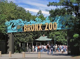 Bronx Zoo Metropolitan zoo in the Bronx, New York City