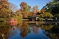 Brooklyn Botanic Garden New York November 2016 008.jpg
