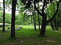 Brzesko, ul. Götza-Okocimskiego 6 park, 1900 nr 615228 (13).JPG