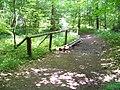 Bubovický potok, mezi vodopády a Kubrychtovou boudou (01).jpg