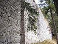 Burg Hohenwaldeck 3.jpg