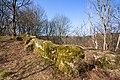 Burgruine-Hattstein-JR-E-3732-2020-04-02.jpg