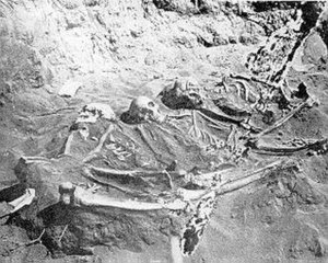 Staten Island - Skeletons unearthed at Lenape burial ground in Staten Island, the largest pre-European burial ground in NYC