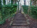 Bushy Park, Dublin -146460 (44661366900).jpg