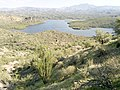 Butcher Jones Trail - Mt. Pinter Loop Trail, Saguaro Lake - panoramio (119).jpg
