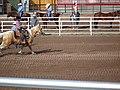 CFD Tie-down roping Matt Peters -2.jpg