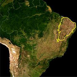 Localizaçao do bioma da Caatinga como definido pelo IBAMA. Imagem de satélite da NASA.
