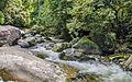 Cachoeira do Parque Nacional da Serra dos Órgãos Sede Guapimirim.jpg