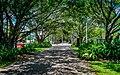 Cairns Esplanade walkway near the Lagoon - panoramio.jpg