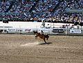 Calgary Stampede Rodeo final day 18 - 2011.jpg