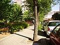 Calle de la Isla de Arosa - panoramio.jpg