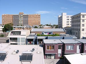 Camperdown, New South Wales - A view of rooftops in Camperdown