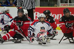 Sledge hockey - Canada vs USA at the 2015 World Sledge Hockey Challenge
