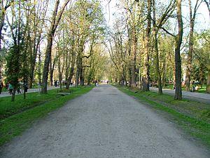 Cluj-Napoca Central Park - Image: Central Park Cluj Napoca 1