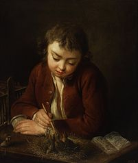 Boy feeding chicks.