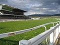 Cheltenham Race Course - geograph.org.uk - 2316.jpg