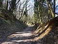 Chemin d'Angely @ Vaulx (51055511498).jpg