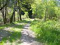 Chemin du Goulet.jpg