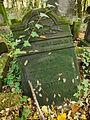 Chenstochov ------- Jewish Cemetery of Czestochowa ------- 142.JPG