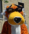 Chester the Cheetah (5879024675) (cropped).jpg