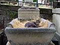 Cimetière de Montmartre 3 June 2001, cat 01.jpg