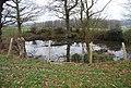 Circular pond - geograph.org.uk - 1105546.jpg