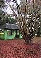 City park shelter - New Orleans.jpg