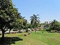 Ciudad del este - panoramio (1).jpg