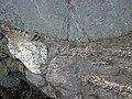 Clast-rich impact pseudotachylite (Sudbury Breccia, Paleoproterozoic, 1.85 Ga; Windy Lake Northwest roadcut, Sudbury Impact Structure, Ontario, Canada) 95 (32815310117).jpg