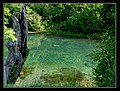 Clear water - Trophy part - panoramio.jpg