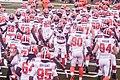 Cleveland Browns vs. Atlanta Falcons (28517862553).jpg