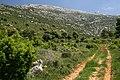 Clot dels Arenals - panoramio (2).jpg