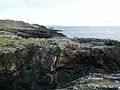 Coastline near Port Wemyss - geograph.org.uk - 273231.jpg