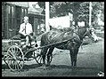 Coca-Cola horse drawn delivery wagon, 1909.jpg
