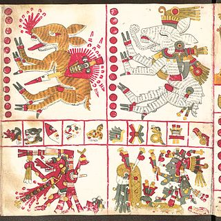 Nagual shapeshifting sorcerer in Mesoamerican folk religion