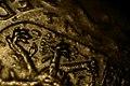 Coins 2 1-2 G (3059924207).jpg