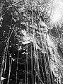 Collectie Nationaal Museum van Wereldculturen TM-10021212 Een steile bergwand waar boom wortels langs hangen Sint Eustatius fotograaf niet bekend.jpg