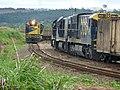 Comboios em cruzamento no pátio da Estação Pimenta em Indaiatuba - Variante Boa Vista-Guaianã km 216 - panoramio.jpg