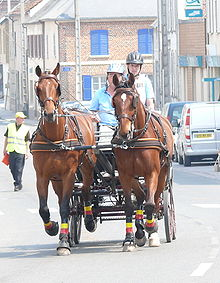 Two drivers driving two-horse carriage on city street
