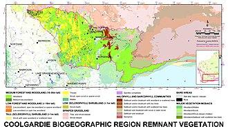 Coolgardie (biogeographic region) - The Coolgardie biogeographic region, with physiognomic remnant vegetation type.