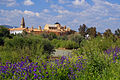 Cordoba, Spain (11174732815).jpg