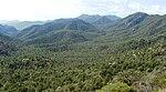 Vuoristot ja metsät paratiisista länteen, Arizonassa.