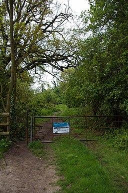 Cranham Marsh - geograph.org.uk - 791103