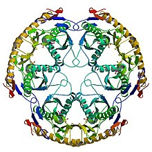 Crystal structure 1UDN.jpg