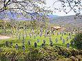 Cuacos de Yuste - Cementerio Militar Aleman 03.jpg