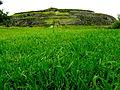 Cuicuilco verde.JPG