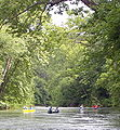 Current River MO 2009-06-15 n65 below Welch Spring crop2.jpg