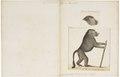Cynocephalus porcarius - 1700-1880 - Print - Iconographia Zoologica - Special Collections University of Amsterdam - UBA01 IZ20100052.tif